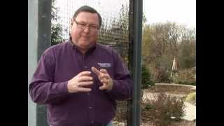 Composting: Tips for Success