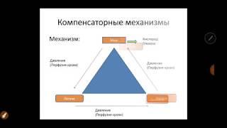 Основы Экг. Урок 1 Введение