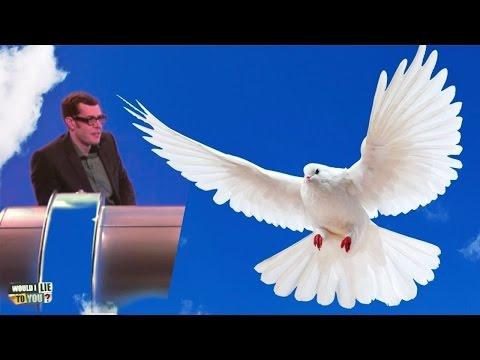 Richard Osman's prize-winning racing pigeon - Would I Lie to You? [CC]