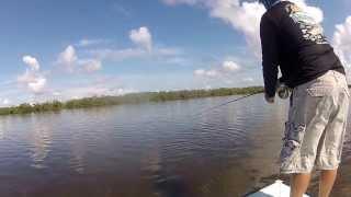 4 pound redfish snaps 10 wt fly rod
