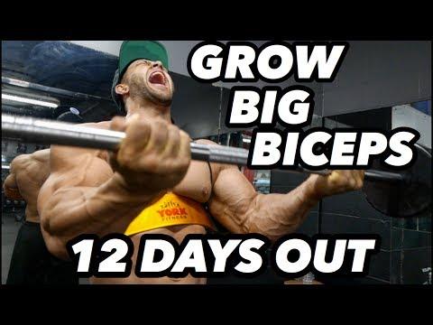 BODYBUILDING MOTIVATION - REGAN GRIMES 12 DAYS OUT