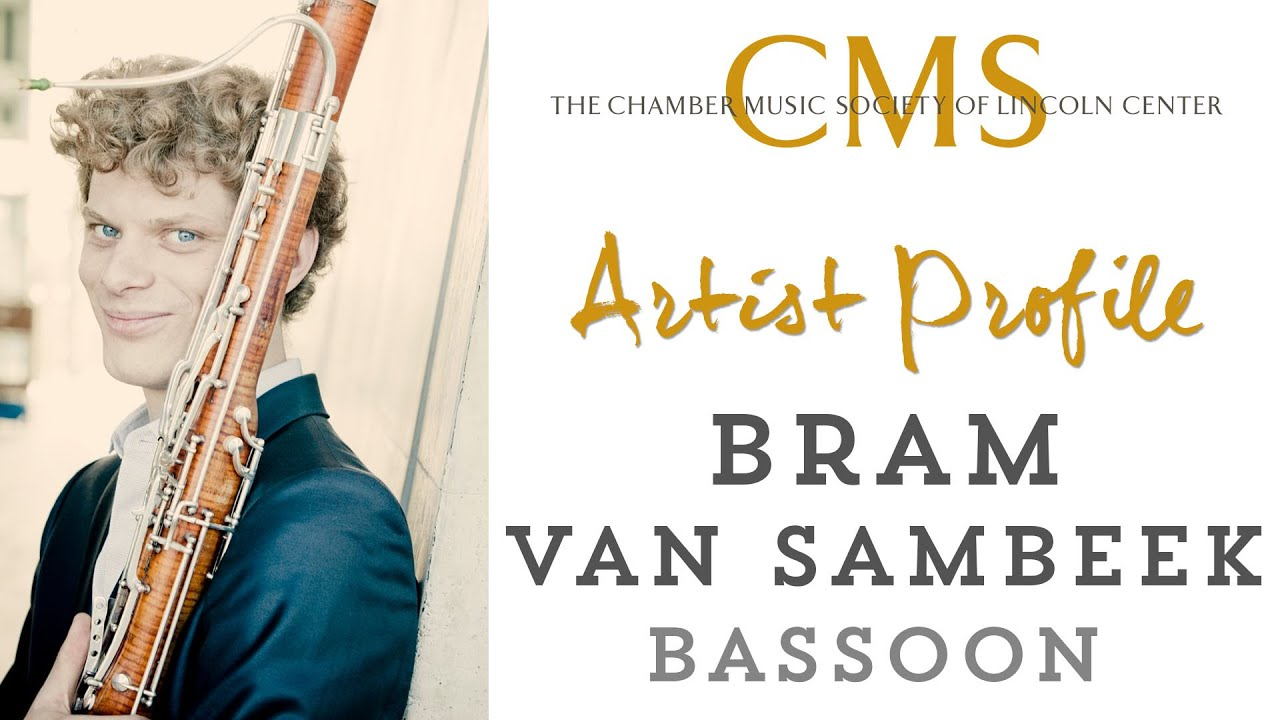 Bram van Sambeek Artist Profile - February 2014