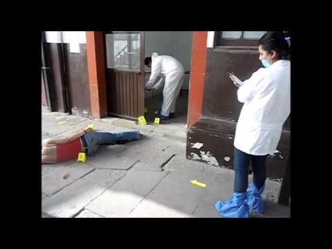 PRACTICA DE CRIMINALISTICA 1 - YouTube