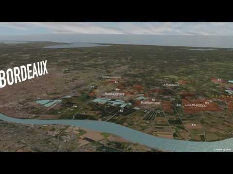 wine article The Appellations Of The Medoc