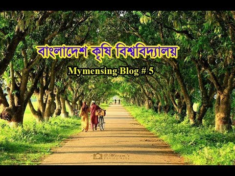 Blog-6: Most Beautiful Campus In the World ।।  Bangladesh Agricultural University