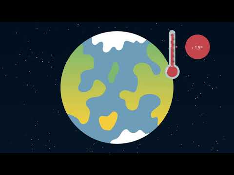 How can carbon dioxide be removed from the atmosphere? | ACCIONA