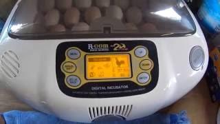 Цифровой инкубатор R com 20 ещё раз о нём.