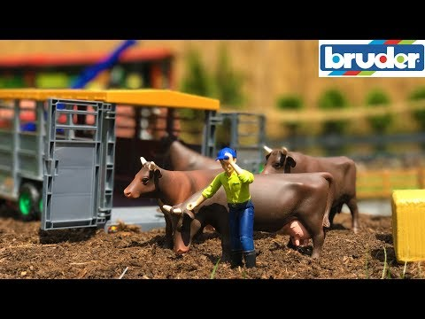 BRUDER TOYS RC truck and tractor COWS transport! Unique rc trailer for animal transport!