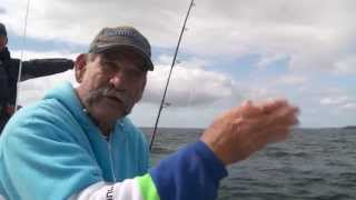 How To Catch Kingfish - SHIMANO FISHING