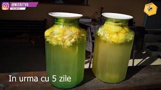 ceea ce face miere cu varicoză)