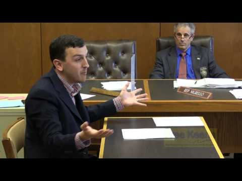 NH Bitcoiners Testify to State House Committee Day 1/2