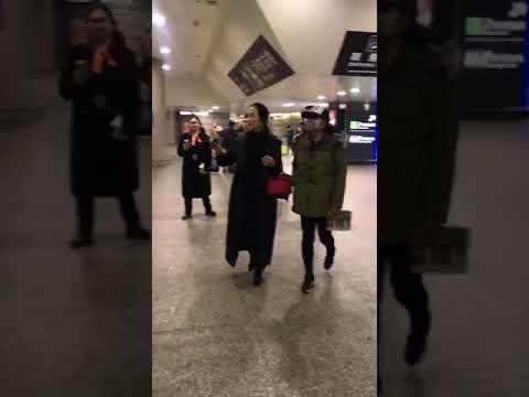 刘晓庆 Liu Xiaoqing
