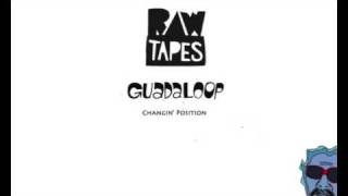 The Guadaloop - Changin Position