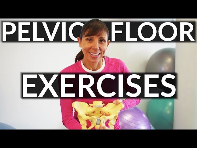 Pelvic+Physical+Therapy+Exercises