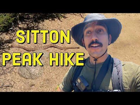 sitton-peak-hike-(turn-by-turn-directions-&-rattlesnake-encounter!!)