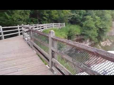 Video of Tahquamenon Falls 1 State Park, MI from Stephanie C.