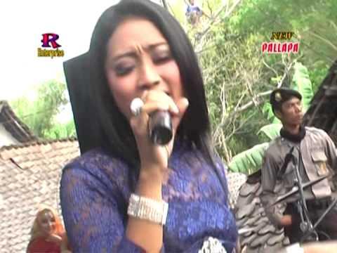 New Pallapa Live In Lamongan Tak Butuh Cinta Anissa Rahma