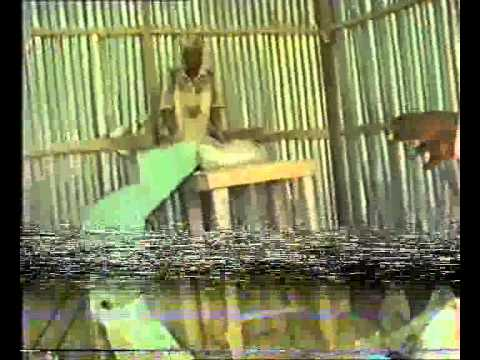 LAGOS STATE MINISTRY OF AGRICULTURE  ANOBOTO OJO FARM  11TH NOVEMBER 2001