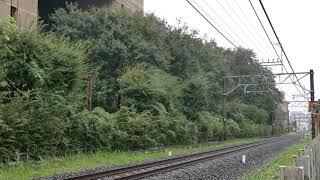 #54 西武新101系、秋雨の多摩湖線をゆく