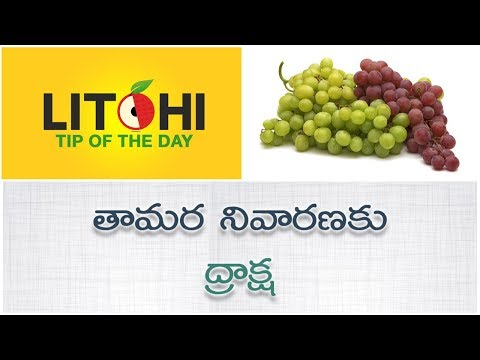 How to prevent eczema| eczema treatment at home| Tamara thaggalante | Litchi Tip of the Day