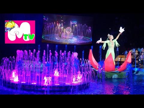 Цирк на воде  Смотреть цирковое представление