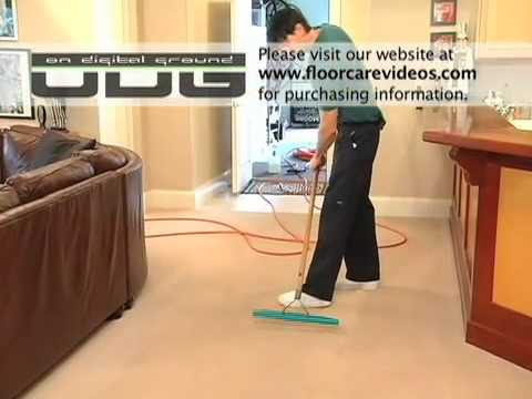 The 12-Step Carpet Cleaning Process