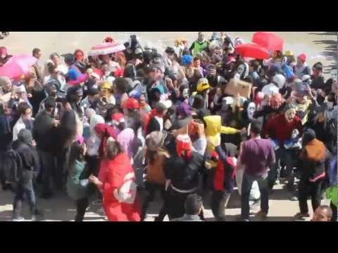 Harlem Shake : Lycée Jeunes Filles De Sousse