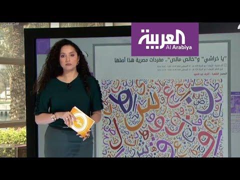 العربية.نت اليوم.. ياخراشي وقصة سعودي أنقذ فتاة غارقة  - نشر قبل 2 ساعة