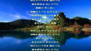 赤城麗子 - おしどり涙