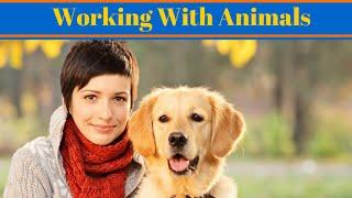 Working With Animals - Jobs Working With Animals