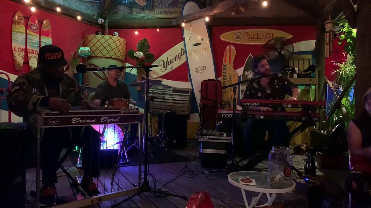 The Bird Tribe Show 2/9/20 at Gilligans Siesta Key