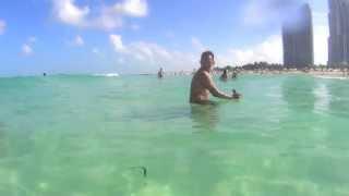 Florida 2013 Summer Trip - Orlando, Tampa, and Miami