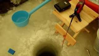 Repeat youtube video ワカサギマチックDDM  氷上ワカサギ釣り 小川原湖 内沼 時速140 釣果約450