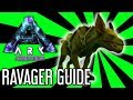 Ravager Guide for ARK: Aberration