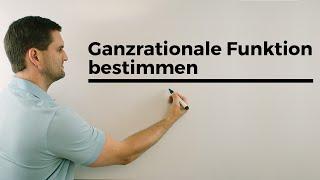 Ganzrationale Funktionen bestimmen, Steckbriefaufgabe, Rekonstruktion, Vokabeln, Mathehilfe online