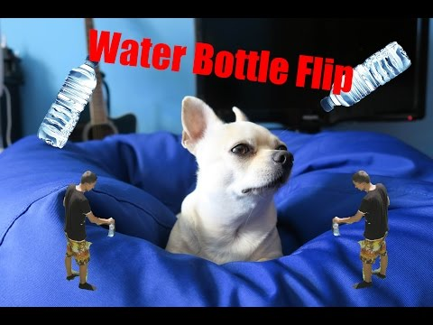 Water Bottle Flip / Тва с въртенето на шише (challenge)