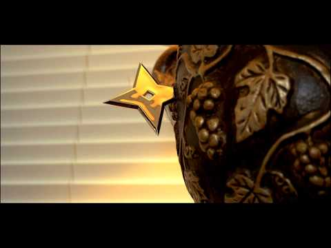 Ninja Real Estate Sales Movie in Jacksonville, FL (Oakleaf Plantation)