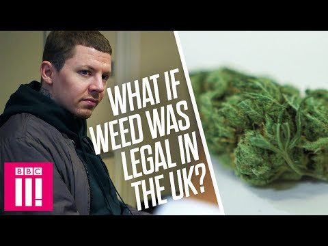 Professor Green: What Would Happen If The UK Legalised Weed?