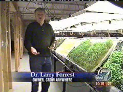 Aeroponics Farm grows organic aeroponic food