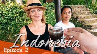 DRINKING CAT POOP COFFEE BALI 💩 INDONESIA VLOG #2