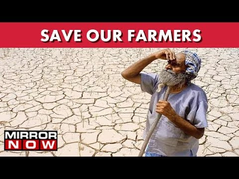 Gujarat: Farmers Cry Out For Help, No Dams Or Borewells For Miles I The News