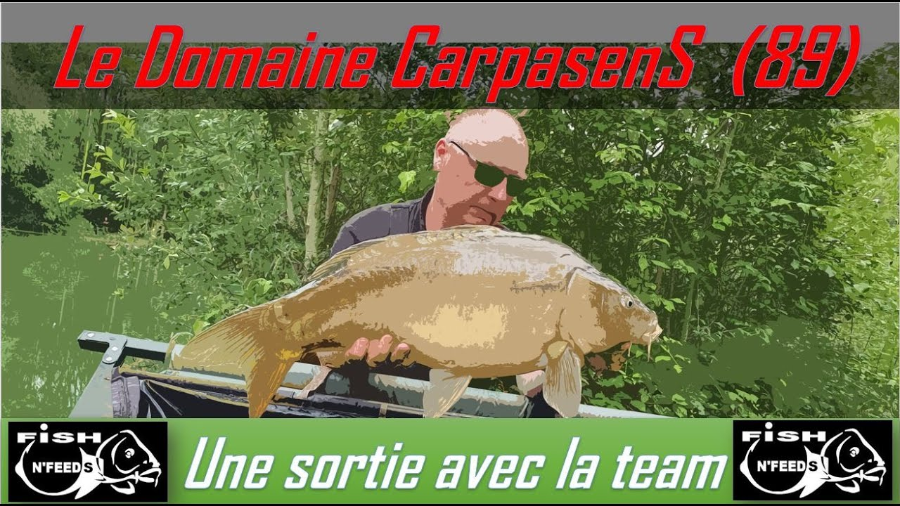 🎥🎞 Pêche à la carpe sur le domaine CarpasenS, le carpodrome avec l'équipe de Fishnfeeds🤟💪