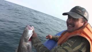 сахалин рыбалка в углегорске