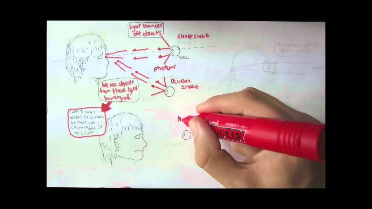 Vision Physiology Introduction Youtube Process Flow Diagram