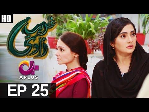 Ghareebzaadi - Episode 25 - A Plus ᴴᴰ Drama