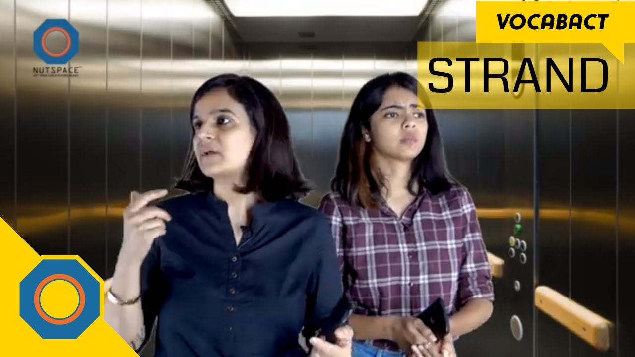 Download Strand meaning | VocabAct | NutSpace