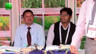 4th International Agronomy Congress On Green TV