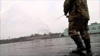 Рыбалка, р  Волхов