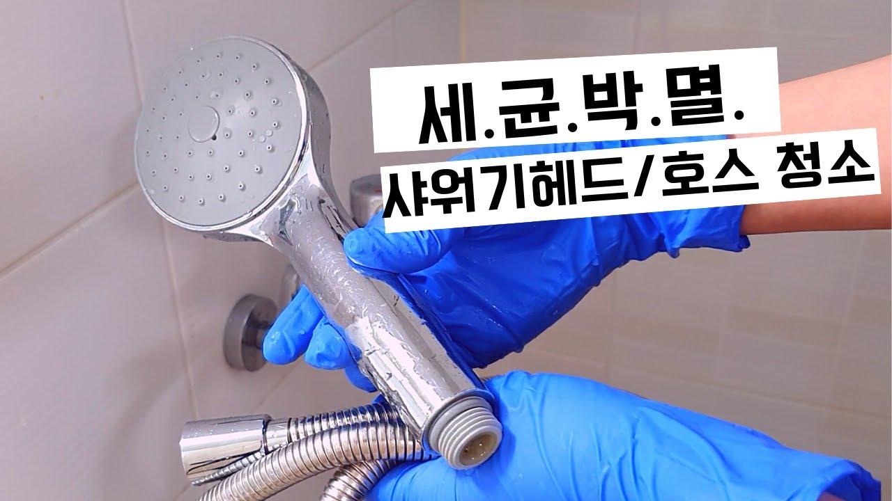 세균박멸! 샤워기 헤드 청소, 샤워기 줄 청소ㅣHow to clean the shower head-[포인트팁]
