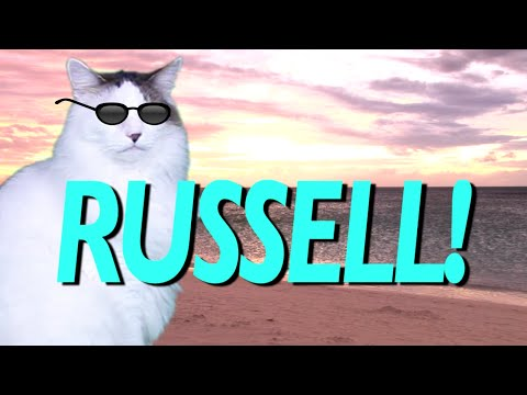 HAPPY BIRTHDAY RUSSELL EPIC CAT Happy Birthday Song YouTube